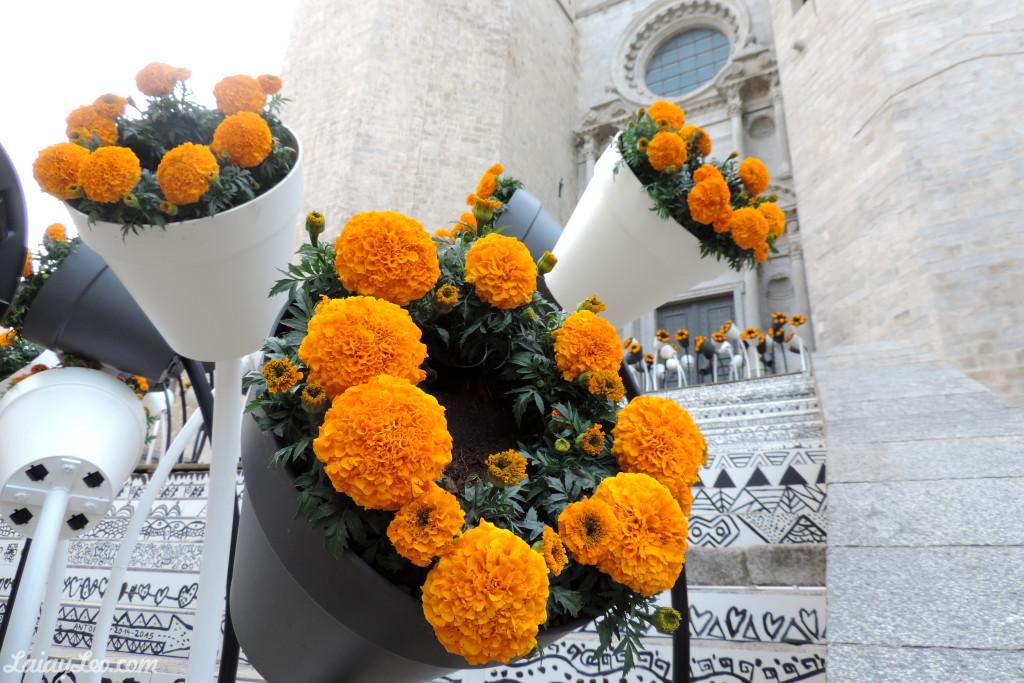 Girona, temps de flors 03