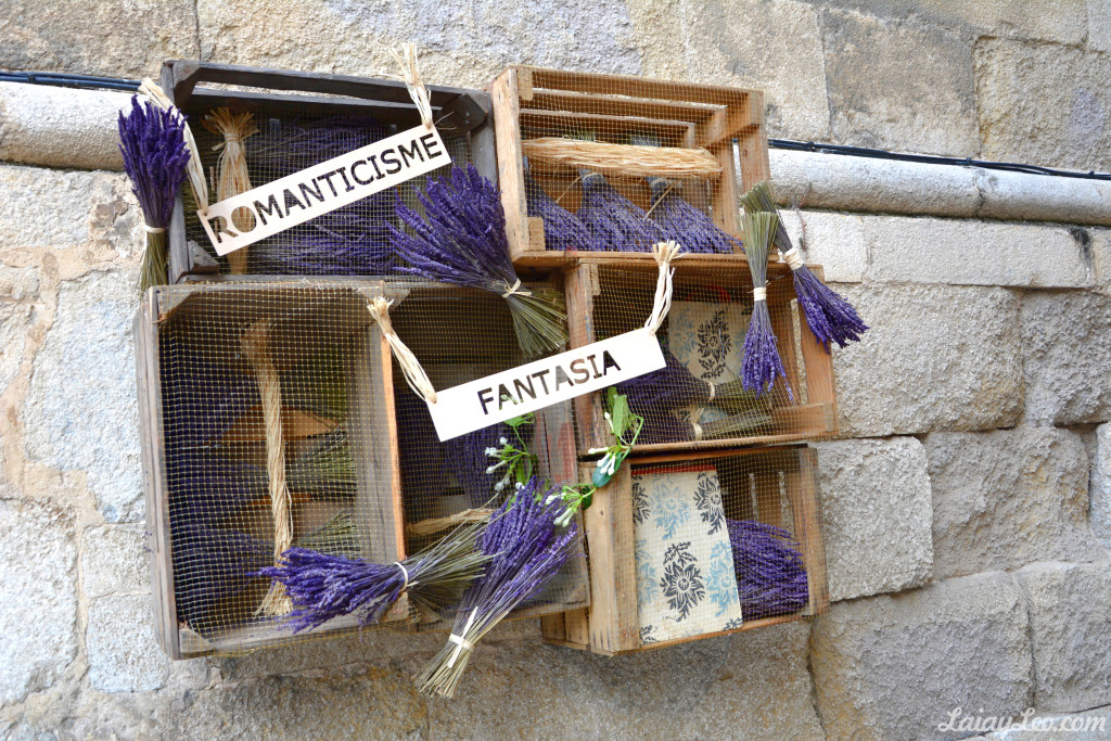 Girona, temps de flors 05