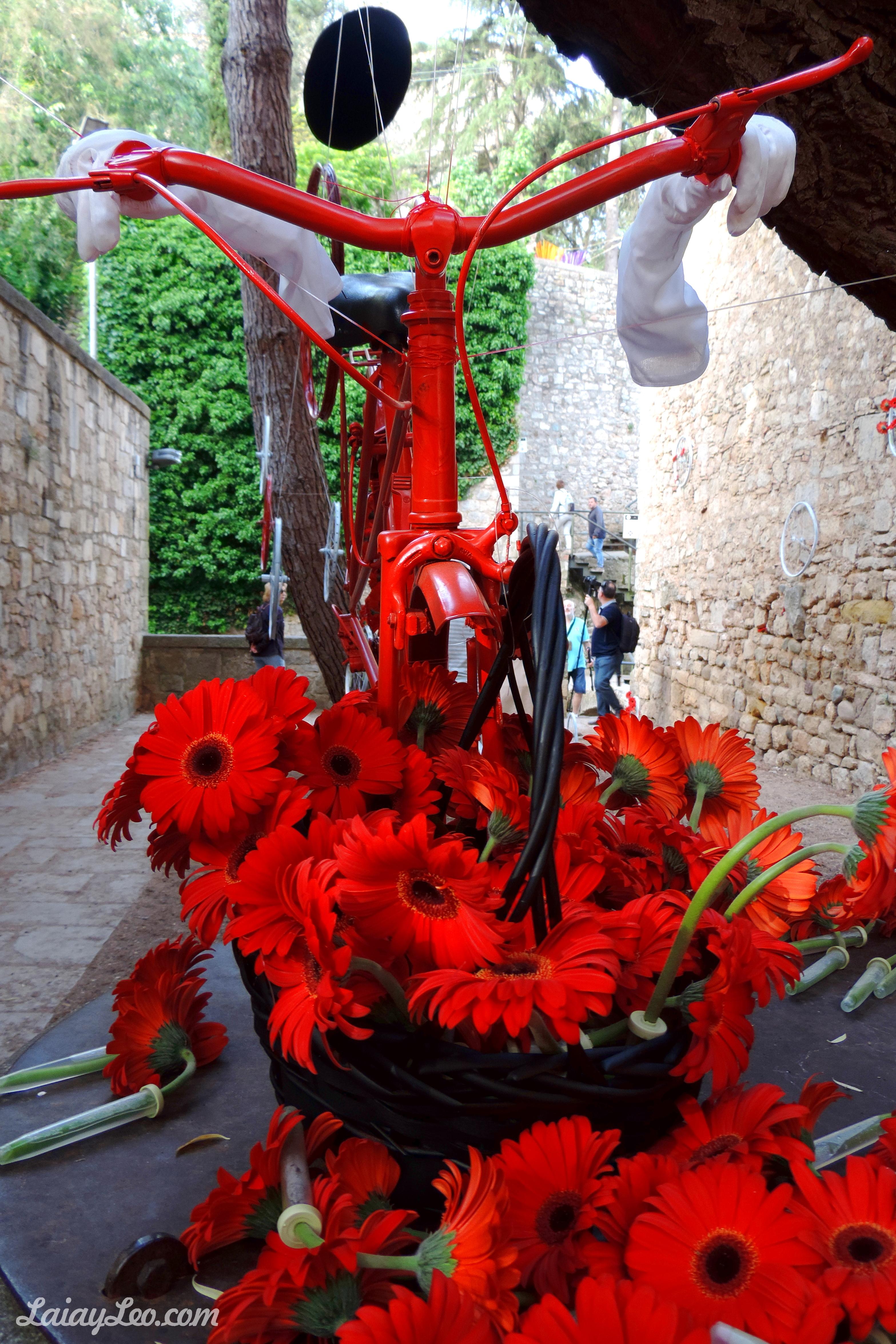Girona, temps de flors 10